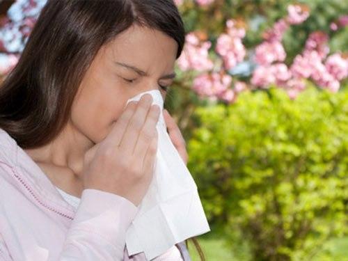 Phòng tránh hắt xì, sổ mũi khi chuyển mùa